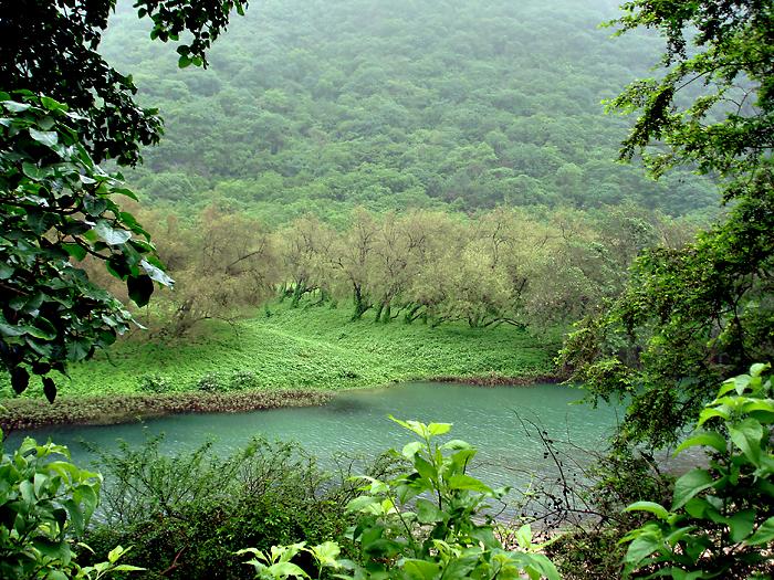 salala-wadi-darbat-reka.jpg