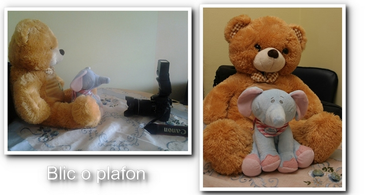 indoorphotography02.jpg