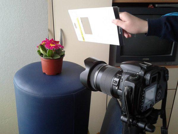 awindowlightphotography-.jpg
