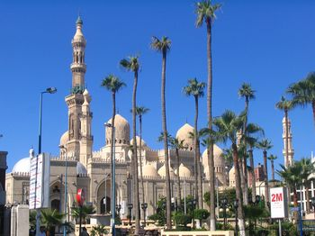 mosques-c-torie.jpg