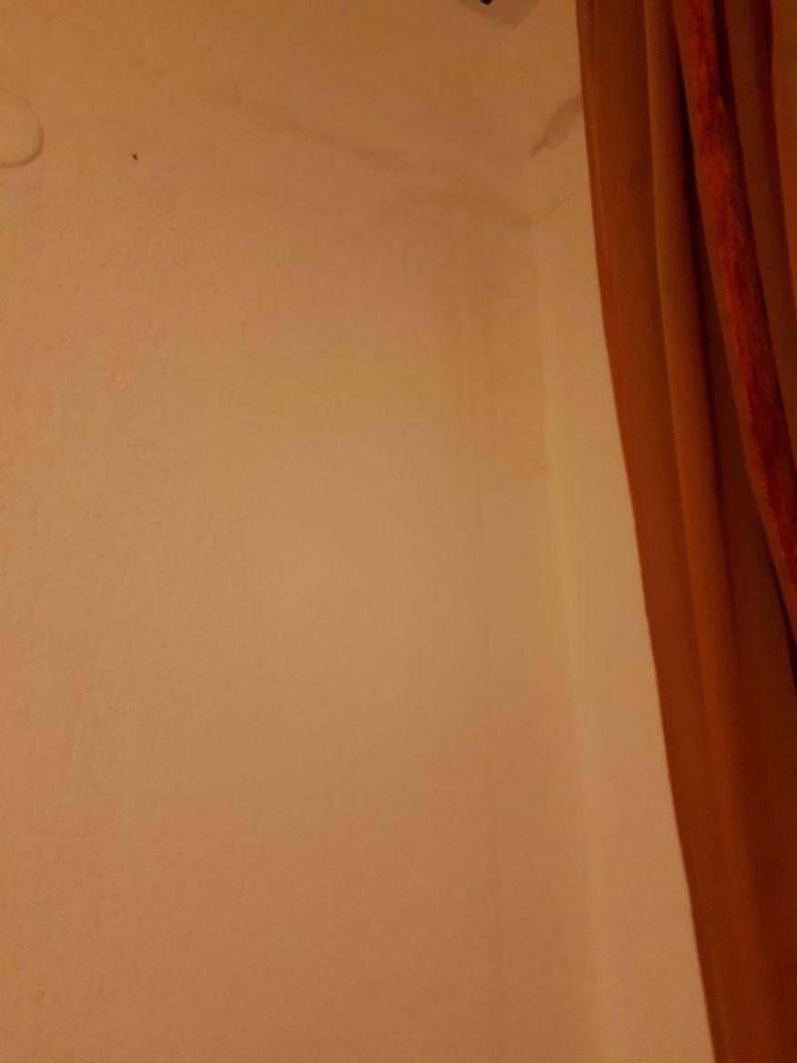 zidovi.jpg